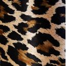 (i)Der Satin der Leopard +1.43€